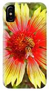 Honey Bees On Flower IPhone Case
