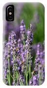 Honeybees On Lavender Flowers IPhone Case