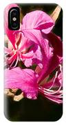 Hong Kong Orchid Tree Flower Blooms IPhone Case