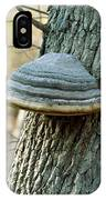 Hoof Fungus (fomes Fomentarius) IPhone Case