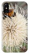 Hooker's Thistle With Bumblebee IPhone Case