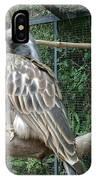 Hornbill Bird IPhone Case