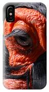 Hornbill Closeup IPhone Case
