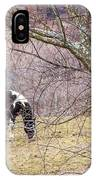 Horse And Winter Berries IPhone Case