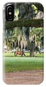 Horse Feeding Under Live Oak IPhone Case