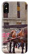 Horse Needs Water In Old Montreal-quebec-canada IPhone Case