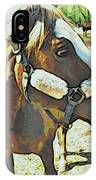 Horse Point Of View IPhone Case