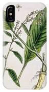 Horseradish IPhone Case