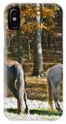Horses In Autumn Pasture   IPhone Case