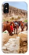 Horses Of Petra IPhone Case