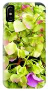Hortensia With Touch Of Pink IPhone Case