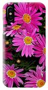 Hot Pink Daisies IPhone Case