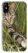 House Cat Hunting In Grass Germany IPhone Case