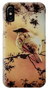 House Sparrow IPhone Case