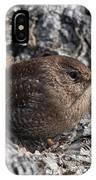 Winter Wren Dsb188 IPhone Case