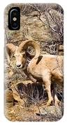 Huge Bighorn IPhone Case