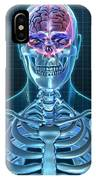Human Skeleton And Brain, Artwork IPhone Case