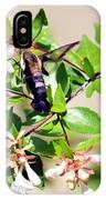 Hummingbird Clearwing Moth IPhone Case