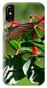 Hummingbird Morning IPhone Case