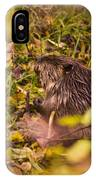 Hungry Beaver IPhone Case