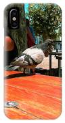 Hungry Pigeon At Mcdonalds IPhone Case