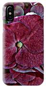 Hydrangeas In Rich Rose Color IPhone Case