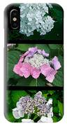 Hydrangeas On Parade IPhone Case