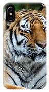 I Peek When I Count Playing Hide N Seek At The Buffalo Zoo IPhone Case