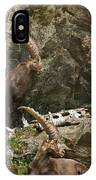 Ibex Pictures 112 IPhone Case