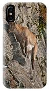 Ibex Pictures 151 IPhone Case