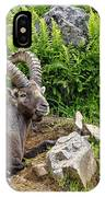 Ibex Pictures 64 IPhone Case