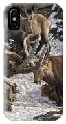 Ibex Pictures 83 IPhone Case