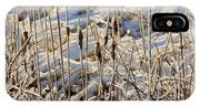 Ice Coated Bullrushes IPhone Case