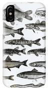 Ichthyology IPhone Case