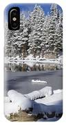 Icy Cold IPhone Case