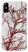 Icy Red Dogwood IPhone Case