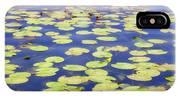 Idyllic Pond IPhone Case