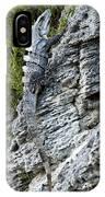 Iguana En La Roca IPhone Case