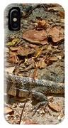 Iguana On A Trail In Manuel Antonio National Preserve-costa Rica IPhone Case