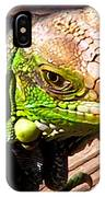 Iguana On The Deck At Mammacitas IPhone Case