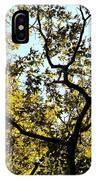 Illuminated Oak Tree IPhone Case