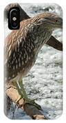 Immature Night Heron IPhone Case