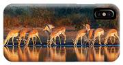 Impala Herd With Reflections In Water IPhone Case