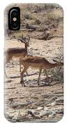 Impala Near Red River IPhone Case