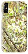In A Dogwood Tree IPhone Case