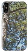 In New Jersey's Pinelands IPhone Case