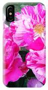 In Strips IPhone Case
