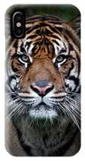 Tiger In Your Face IPhone Case