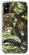 In The Depth Of Enchanting Forest I IPhone Case