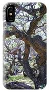In The Depth Of Enchanting Forest II IPhone Case